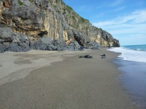 beach of Troncone, marina di camerota