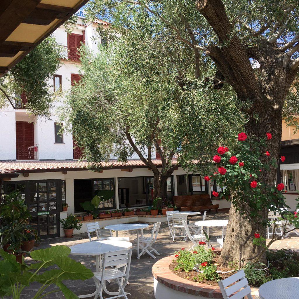 Servizi Hotel: Il bar e il giardino